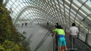 Singapore-wp-0011