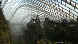 Singapore-wp-0019