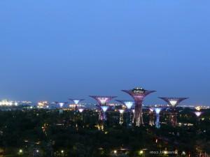 Singapore-wp-0025